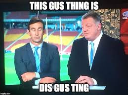 State Of Origin Memes - this gus thing is dis gus ting state of origin phil gus gould