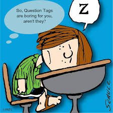 introducing question tags using what you know about your students