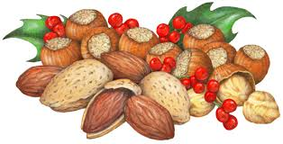 christmas nuts nuts coffee stock illustrations douglas schneider