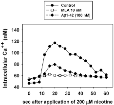mla citation heart of darkness effect of β amyloid peptide 1 42 on the cytoprotective action