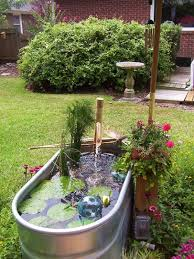 Galvanized Trough Planter by Best 20 Outdoor Fish Tank Ideas On Pinterest Outdoor Fish Ponds