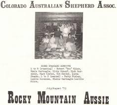 australian shepherd standard las rocosa australian shepherds