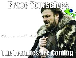 Exterminator Meme - termite funny meme homepro pest control extermination company