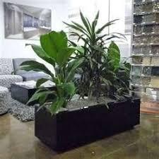 Decorative Indoor Planters 24 Best Modern Indoor Planters Images On Pinterest Indoor