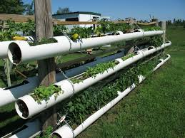 wonderful diy vertical pvc planter pvc pipe pipes and gardens