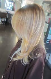 Caramel Hair Color With Honey Blonde Highlights 152 Best Highlights Images On Pinterest Hairstyles Braids And Hair