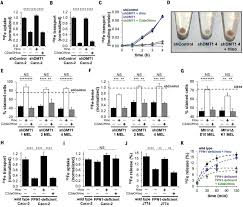 restored iron transport by a small molecule promotes absorption