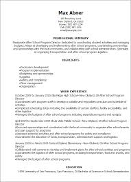 Application Resume Template Professional After Program Director Resume Templates To