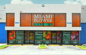 wholesale flowers miami miami flower market celebrates grand opening with complimentary