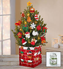Ceramic Christmas Tree With Lights For Sale Mini Christmas Trees U0026 Tabletop Tree Delivery 1800flowers