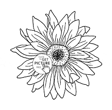 sunflower coloring page for kids flower coloring pages printables