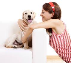 dog adoption petfinder