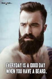 Memes About Beards - th id oip 6c155gnf 6ikuva8vwzjaghalg