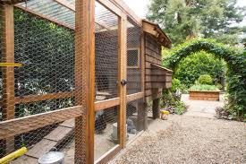Building Backyard Chicken Coop Is A Backyard Chicken Coop Right For You