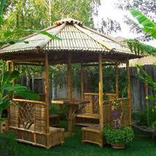 tropical backyard design ideas