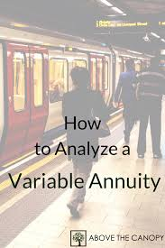 how to analyze a variable annuity above the canopy