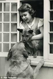 queen elizabeth dog the queen s corgi graveyard tiny headstones of royal pets that