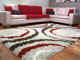 trendy shag carpet today