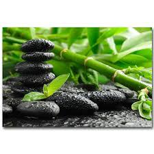 bambou feng shui comparer les prix sur meditation bamboo online shopping