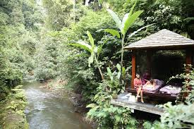kee hua chee live hang out in hanging gardens ubud resort in luxury in the jungle