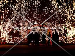 fayetteville square christmas lights fayetteville arkansas christmas lights on dixon square 2 jpg