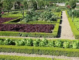 candida martinelli u0027s italophile site italian gardens