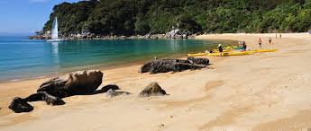 walk with wilsons abel tasman national park new zealand