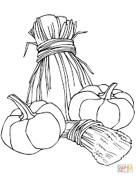 pumpkins and wheat sheaves coloring page free printable coloring
