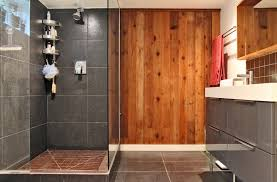 Houzz Bathrooms With Showers Houzz Bathrooms Bathroom Traditional With Custom Shower Cobalt