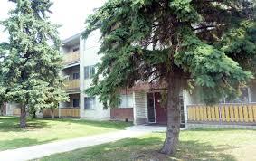 1 Bedroom Apartment For Rent Edmonton Edmonton Apartments For Rent Edmonton Rental Listings Page 12