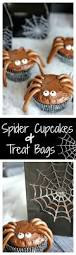 party city halloween treat bags best 25 spider cupcakes ideas on pinterest spooky treats