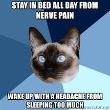 Stay In Bed Meme - stay in bed all day from nerve pain wake up with a headache from
