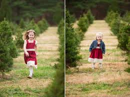 christmas tree farm photo shoot cheminee website