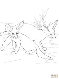 fennec fox babies coloring page free printable coloring pages