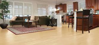 livingroom carpet living room carpet family room flooring options empire today