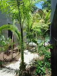 hortulus landscape design u0026 construction beach garden