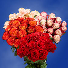 free flower delivery online premium big roses for sale free flower delivery global