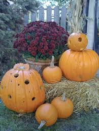 Corn Stalk Decoration Ideas Exterior Design Creative Pumpkin Carving Ideas For Cool Easy Jack