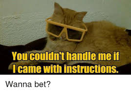 Wanna Bet Meme - you couldn t handle me if l came with instructions wanna bet