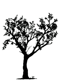 simple black and white tree design clipart panda free clipart