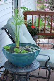 58 best water gardens images on pinterest container water