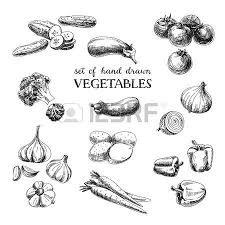 vegetables stock photos royalty free vegetables images and pictures