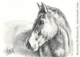 leanne wildermuth artist by nature archive horse portrait