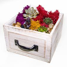 colors of fall wooden drawer terrarium hilliard events