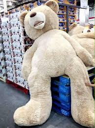 big valentines day teddy bears m a n d a on someone buy me a big teddy for