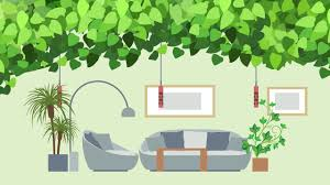 infographic 15 best houseplants for keeping indoor air clean
