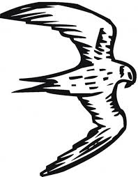 wild falcon bird coloring pages animal coloring pages of