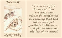 pet condolences pet loss sympathy card pet waits for you memorial sympathy