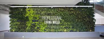 indoor wall garden vertical gardens green wall garden planters for urban gardening