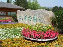 Beijing Botanical Garden Cooling At Beijing Botanical Gardens Cctv News Cntv